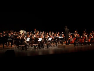 MUSIC PERFORMNCE & ORGANIZATION